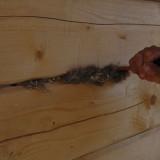 Конопатка дома из древесины