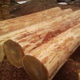 Бревна, полученные путем ручной рубки для возведения сруба частного жилого дома