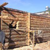 Строительство сруба дома
