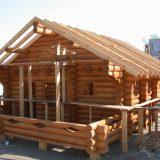 Особенности и плюсы срубов домов